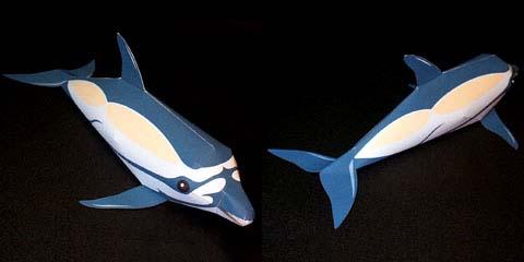 Как сделать из дельфина 855